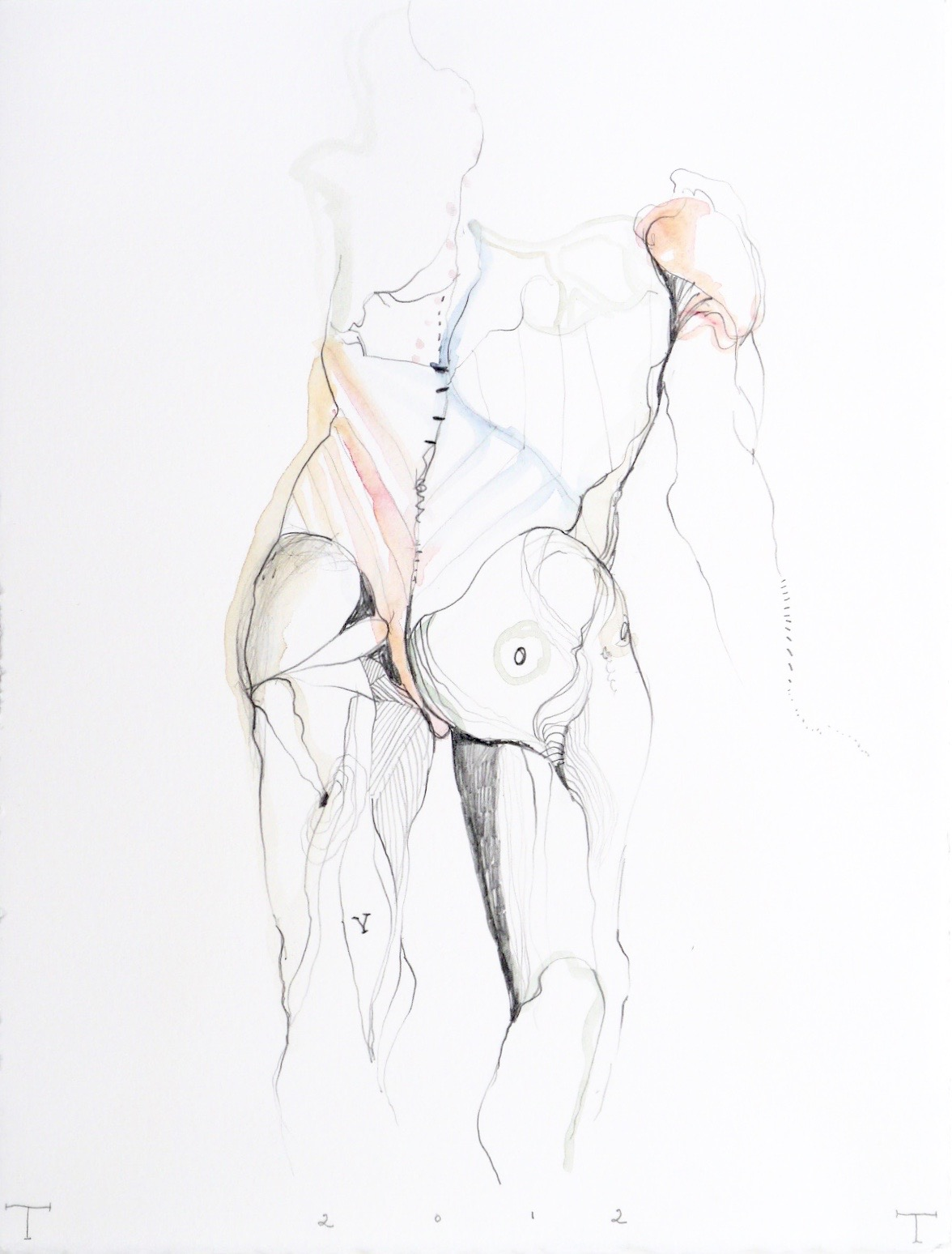 Vesalius study, mixed media on paper, 33 X 25 cm, 2013