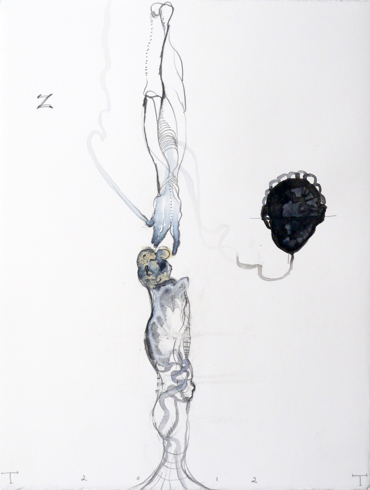 Vesalius series, mixed media on paper, 33 X 25 cm, 2012