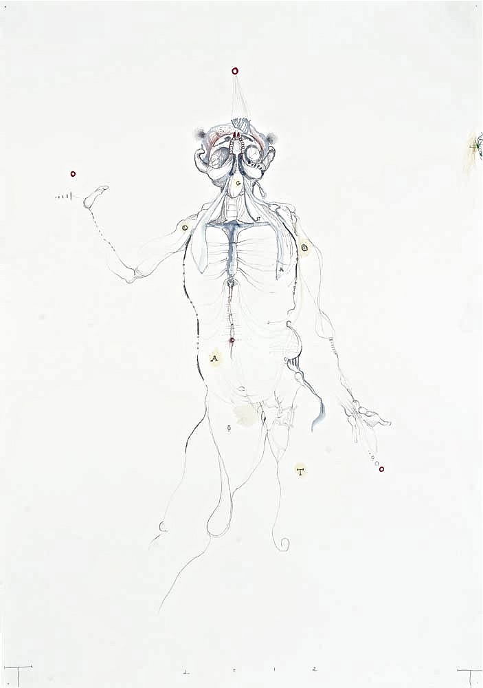 Vesalius Study, mixed media on paper, 100 X 70 cm, 2012