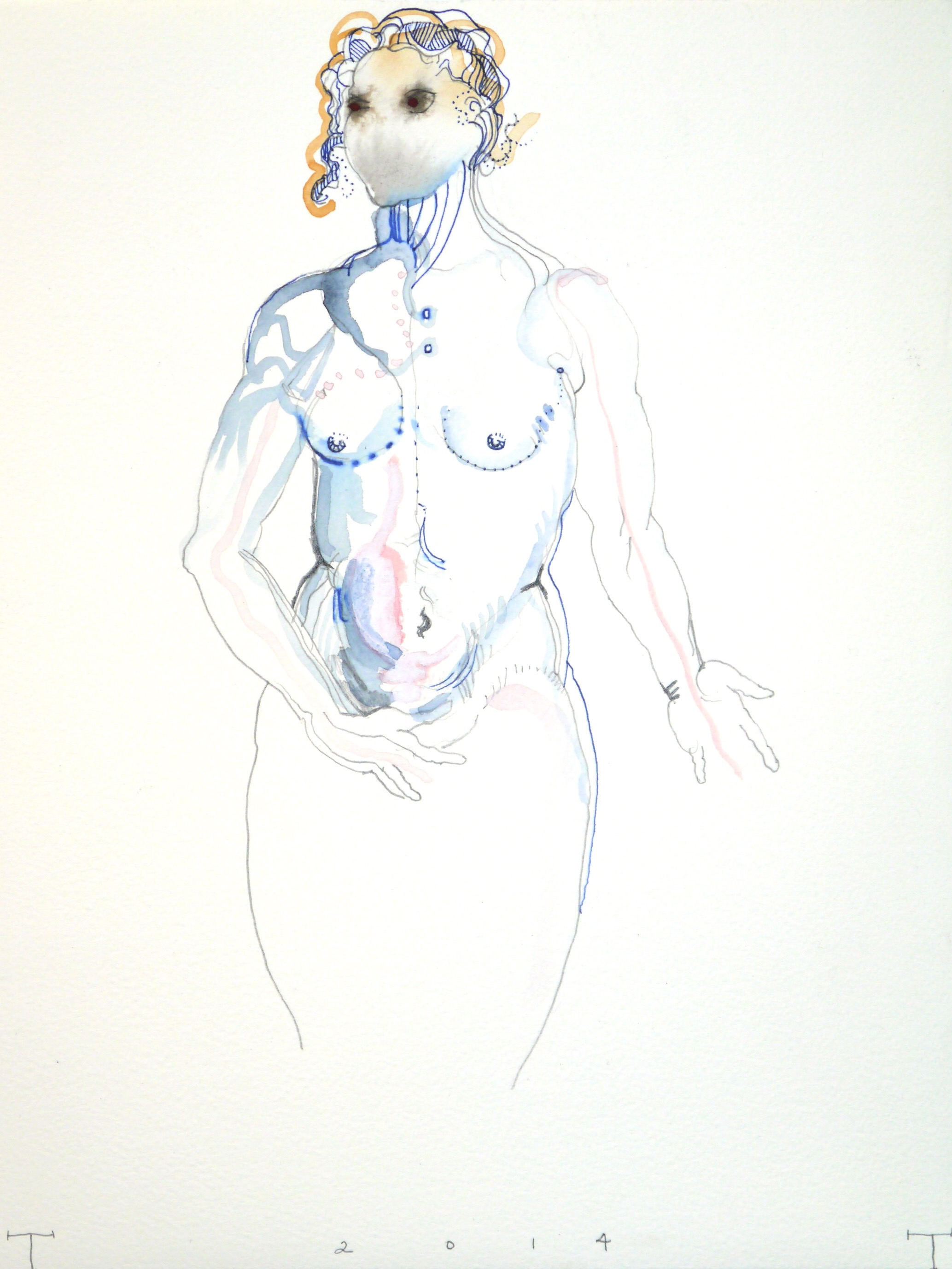 Vesalius study, mixed media on paper, 33 X 25 cm, 2014