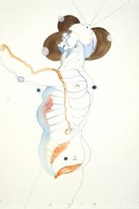 Vesalius study, mixed media on paper, 33 X 25 cm, 2014