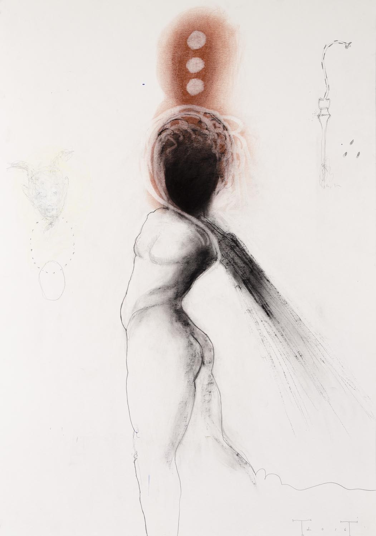 Orpheus,mixed media on paper, 100 X 70 cm, 2016