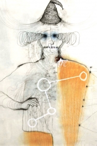 The Jester, mixed media on paper, 100 X 70 cm, 2012 (private collection)