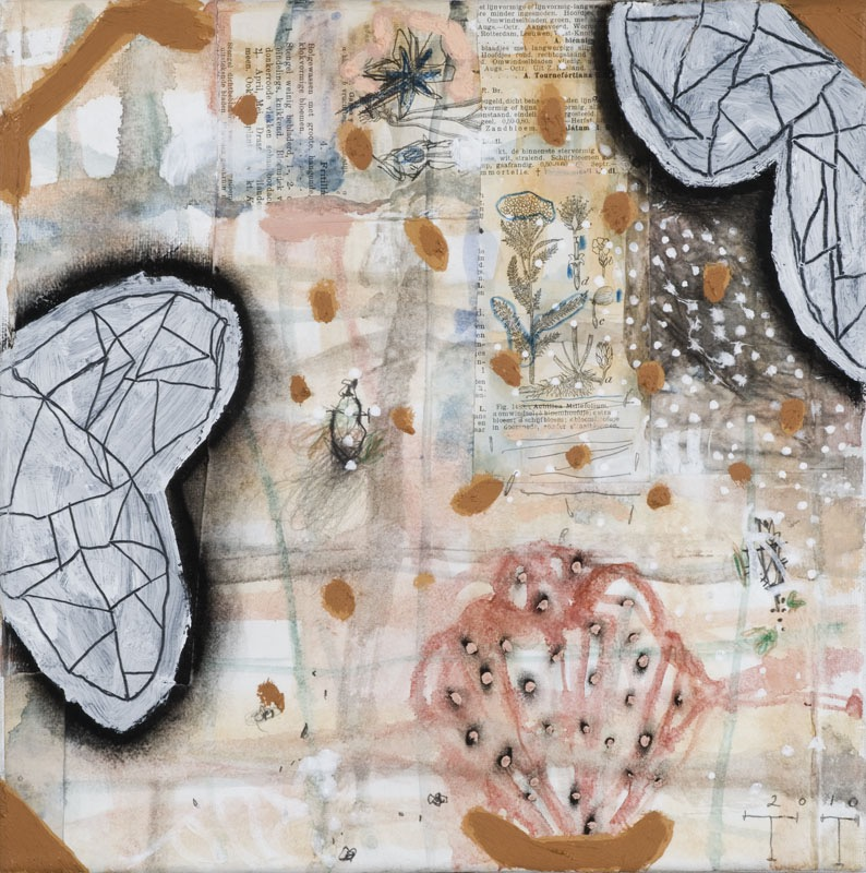 'Natural History' series, mixed media on paper on canvas, 30 X 30 cm, 2010