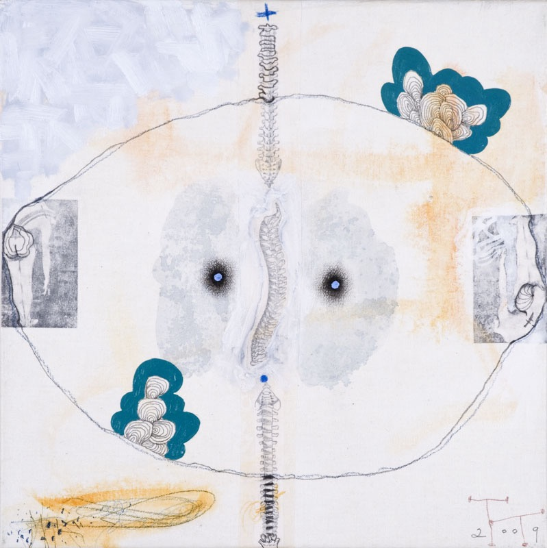 'Anatomy Lesson' series, mixed media on paper on canvas, 40 X 40 cm, 2009
