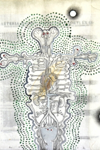 'Anatomy Lesson' series, mixed media on paper on canvas, 30 X 30 cm, 2012